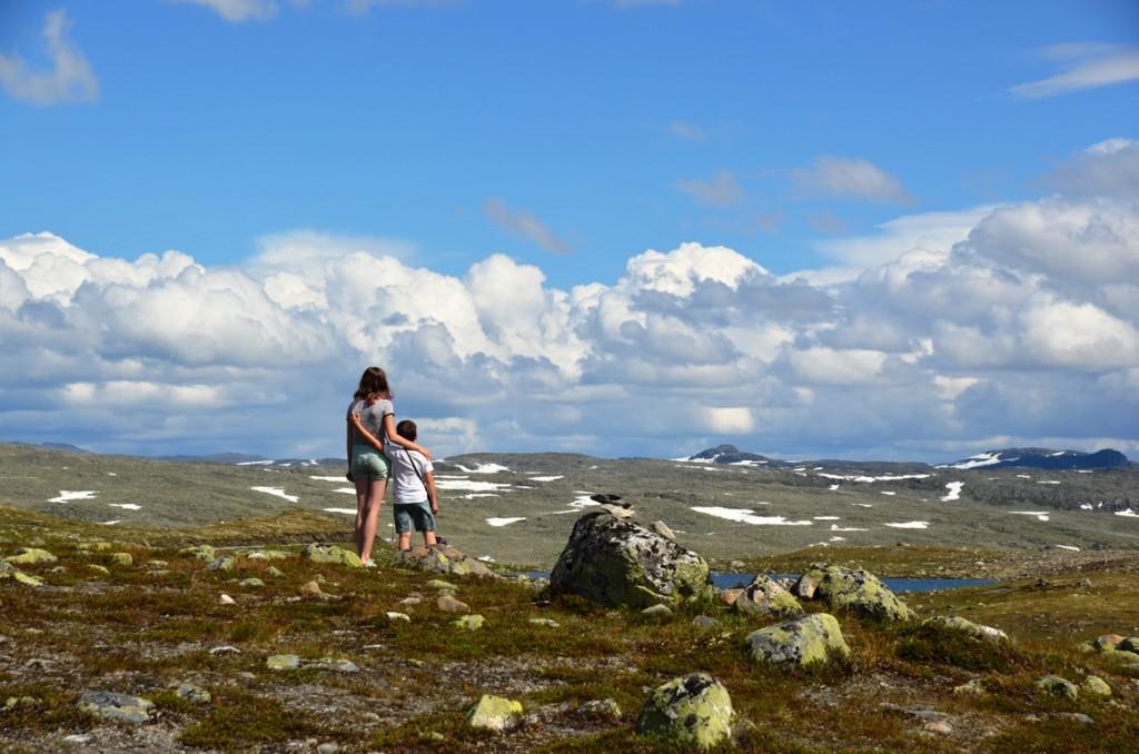 Hoogvlakte in Noorwegen