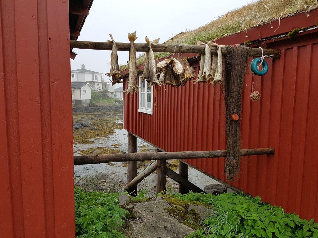 Roadtrip Noorwegen Lofoten