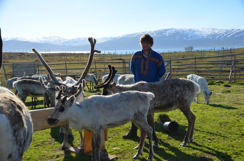 rendierfarm Tromso